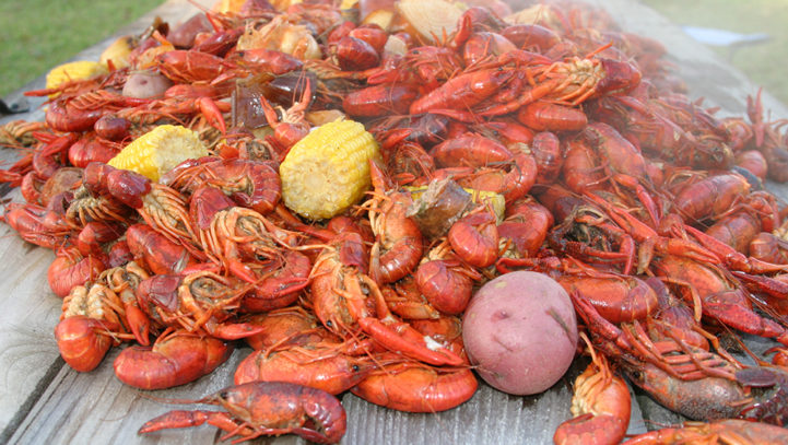 Guns &  Hoses Crawfish Boil